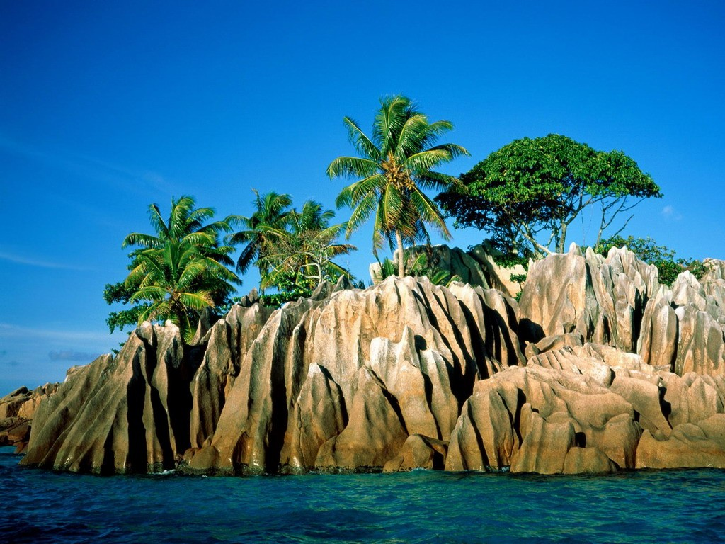 Sunny Tropical Day Wallpaper 1024x768 px