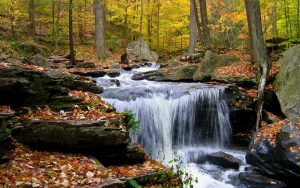 Waterfall In The Autumn Morning
