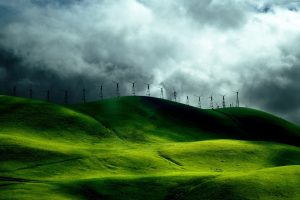 Wind Turbine Fields