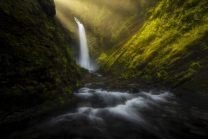 Waterfall Forest Morning Sun Beams 8K